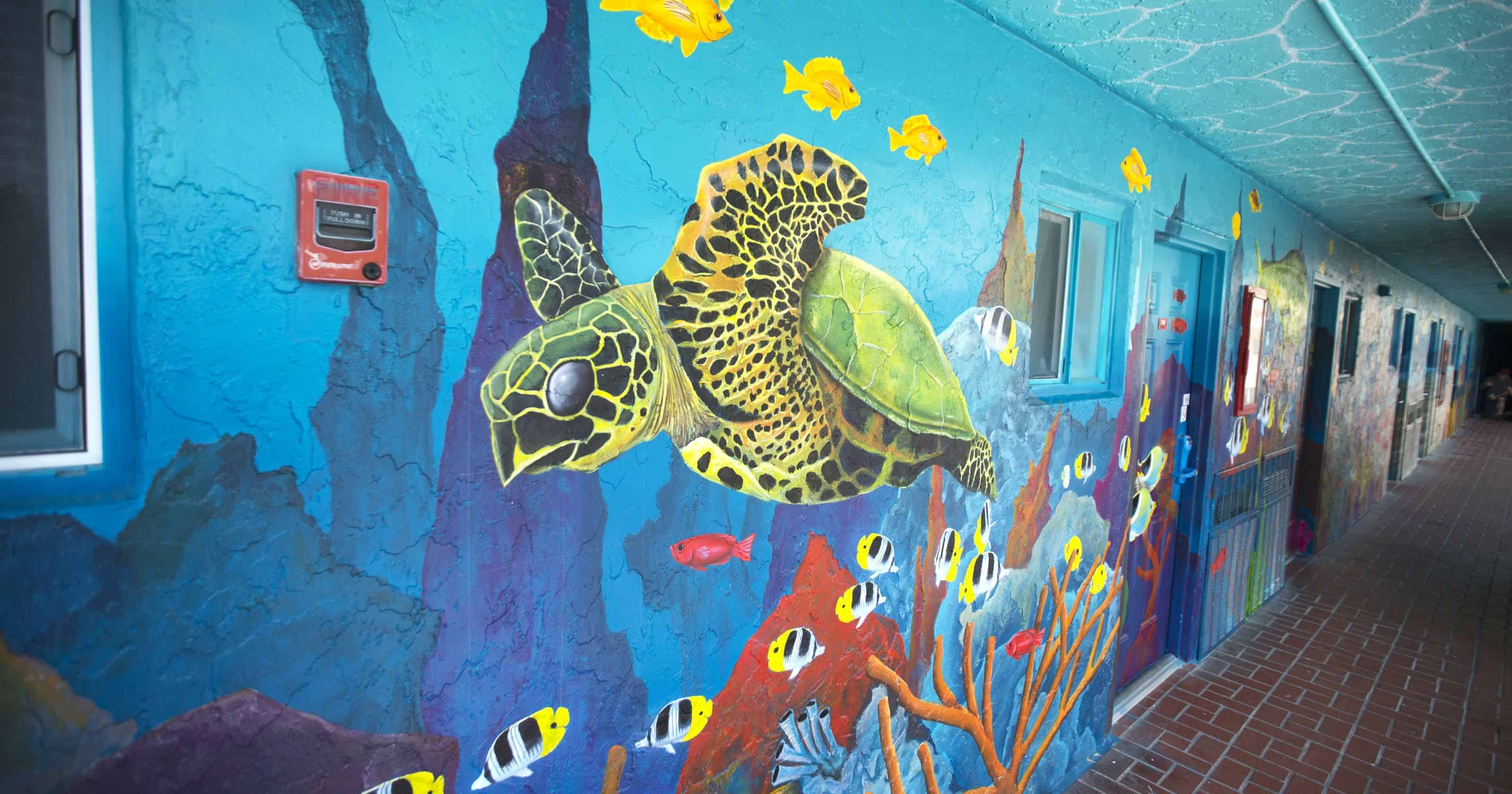 Lani Kai Island Resort | Mural Art: Sea Turtle | Fort Myers Beach