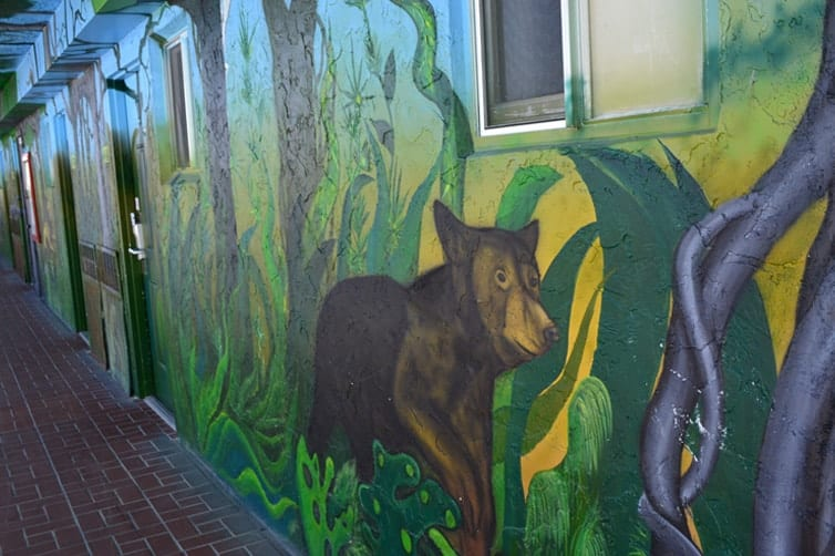 Lani Kai Island Resort | Mural Art: Brown Bear | Fort Myers Beach
