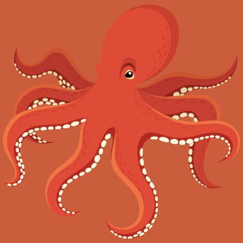 Octopus graphic | octopus-pirate-weekend